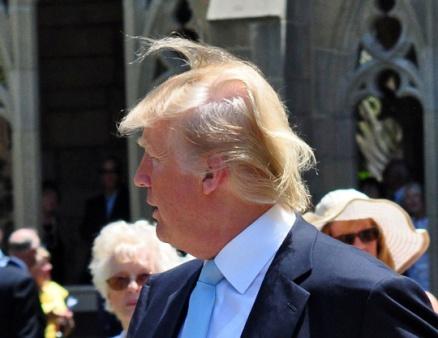 Причёска трампа